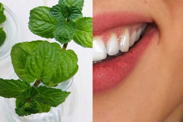 peppermint and teeth